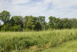 5.35 AC Prime Land, N. State of Franklin, Johnson City, TN