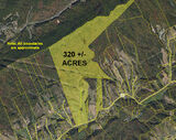 Lone Star Road 320 Acre Tract